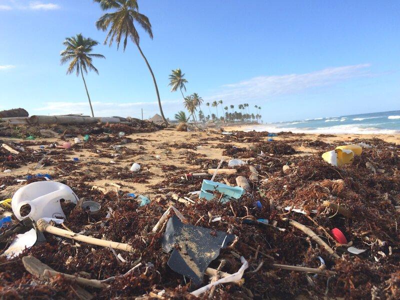 Las bolsas de plastico contaminan el medio ambiente